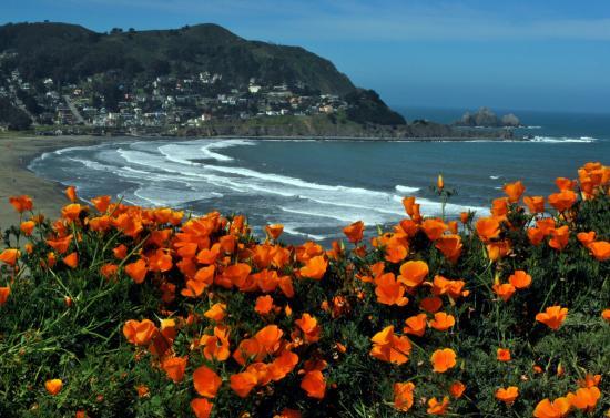 Linda-mar-beach-pacifica