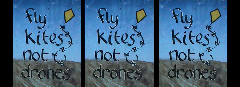 Flykites3