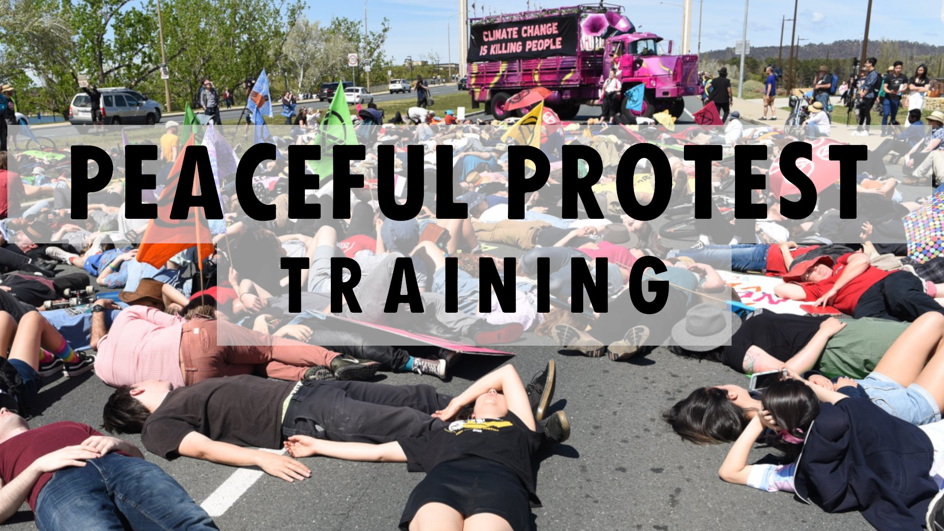 Peacefulprotesttrainingbanner