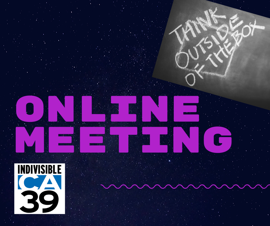 Remote_activism_-_online_meeting