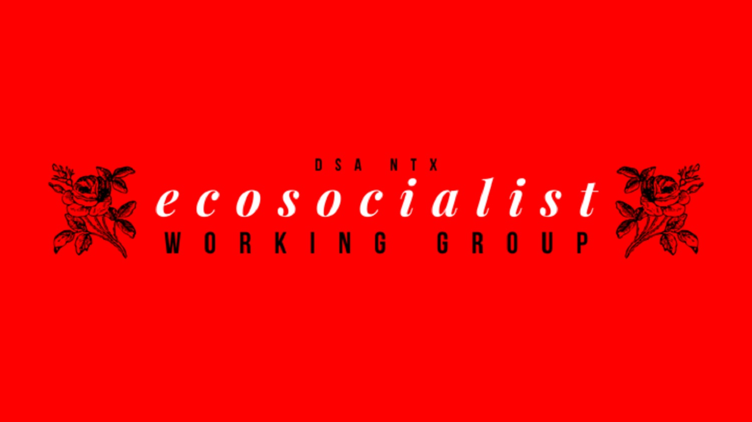 Ecosocialist_working_group_meeting_fb_event_cover_1500