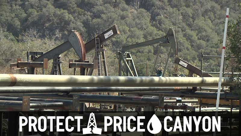 Protect-price-canyon-banner800