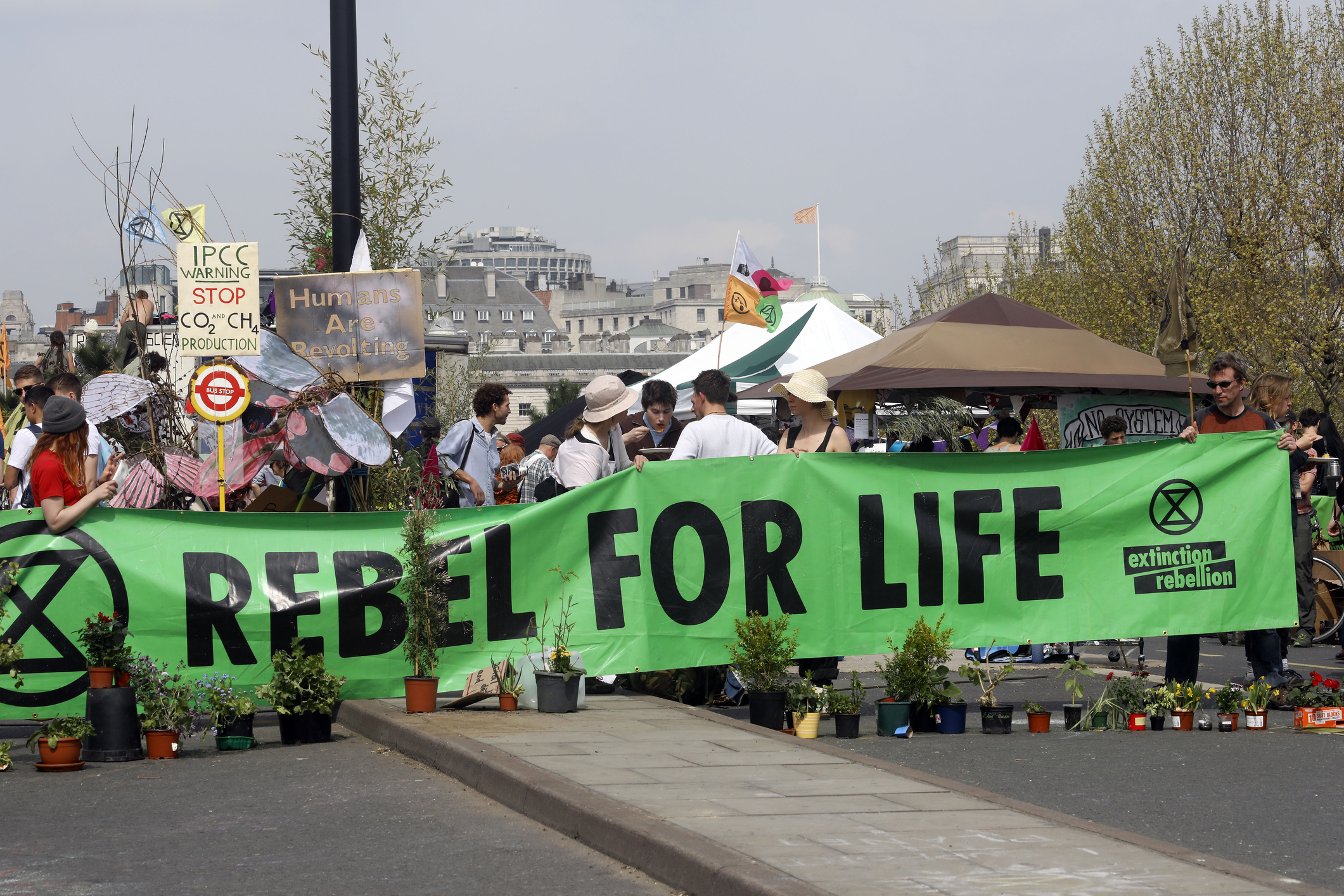 Rebel_for_life_image