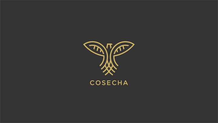Cosechayoutubebanner1-01