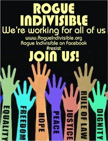 17_rogue_indivisible_2