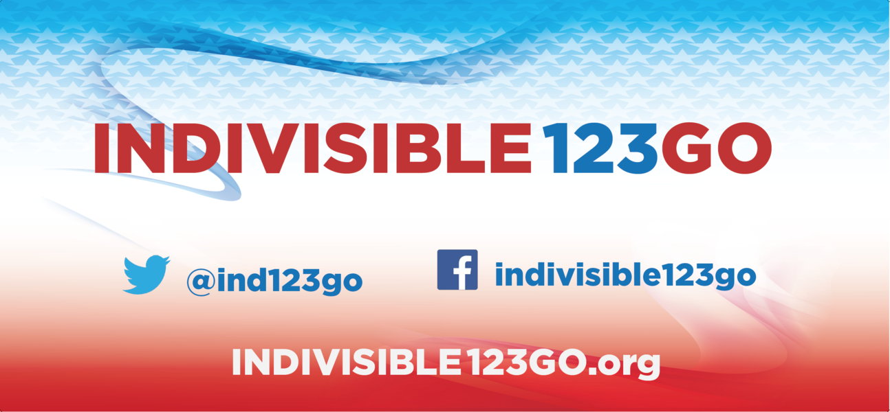 Indivisible_123go_banner_screenshot