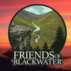 Save-blackwater-group