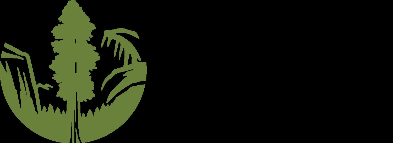 Sc_logo_horiz__web_green