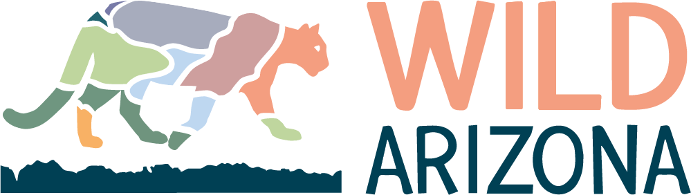 Wildaz_horizontal_logo-transparent