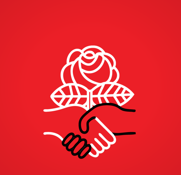 Logo-dsa-color