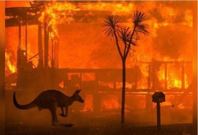 Aus_bushfires