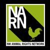1920x1080_narn_logo_bg