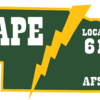 Nape_logo600
