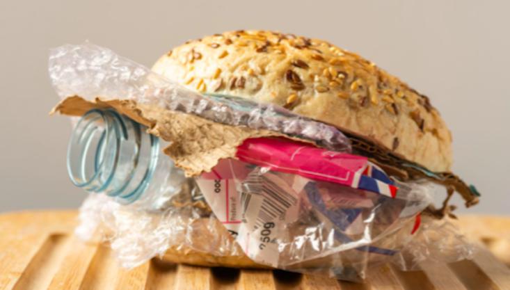 Unwrapped_sandwich