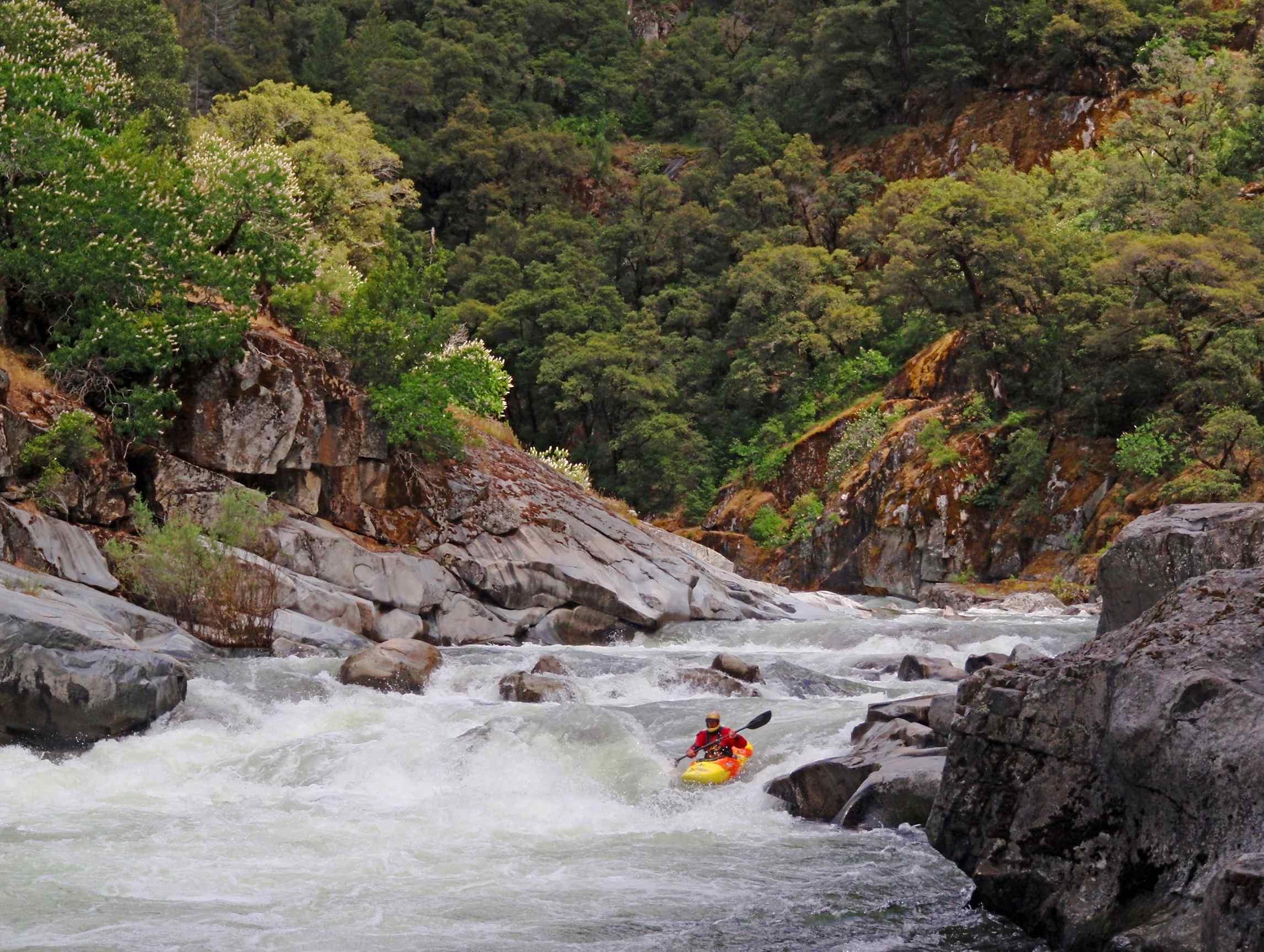 Moke_kayaking_lr