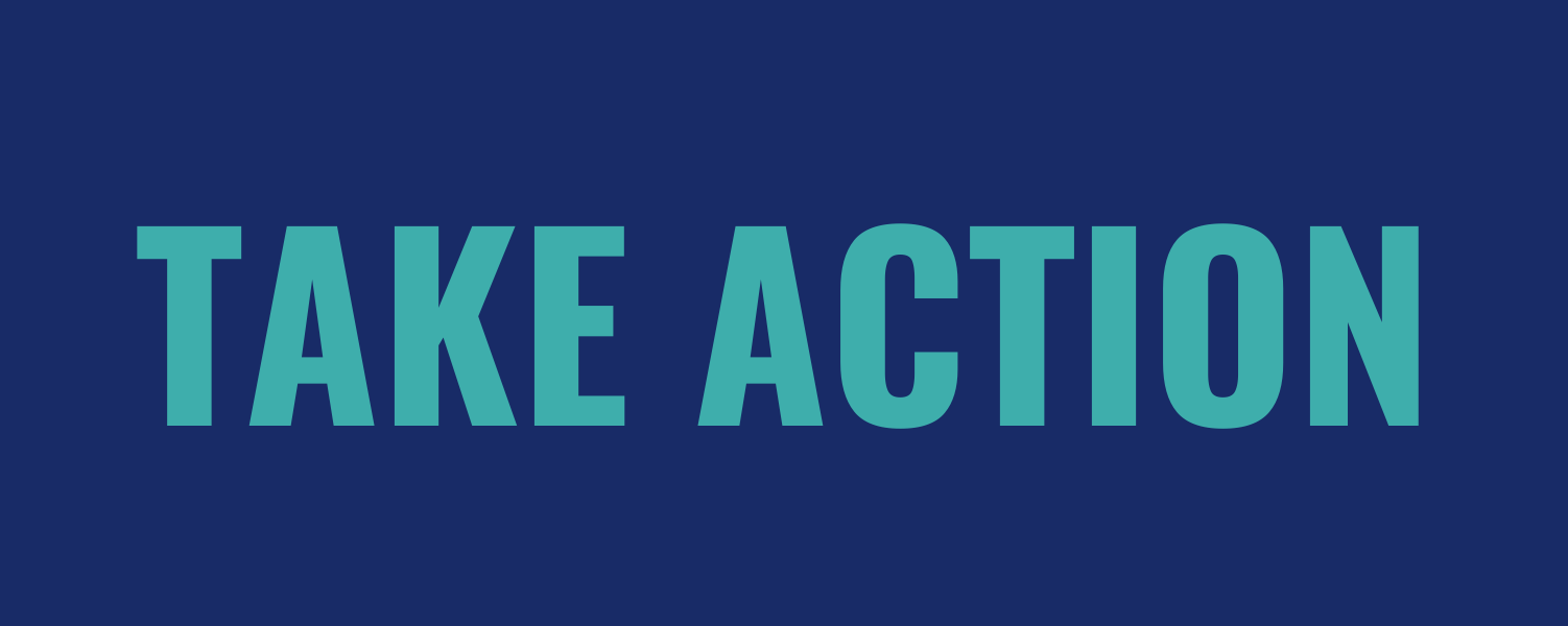 Action_network_-_take_action_(2)