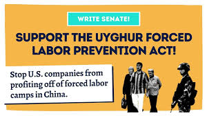 Uyghur_forced_labor_act_-_senate_-_graphic