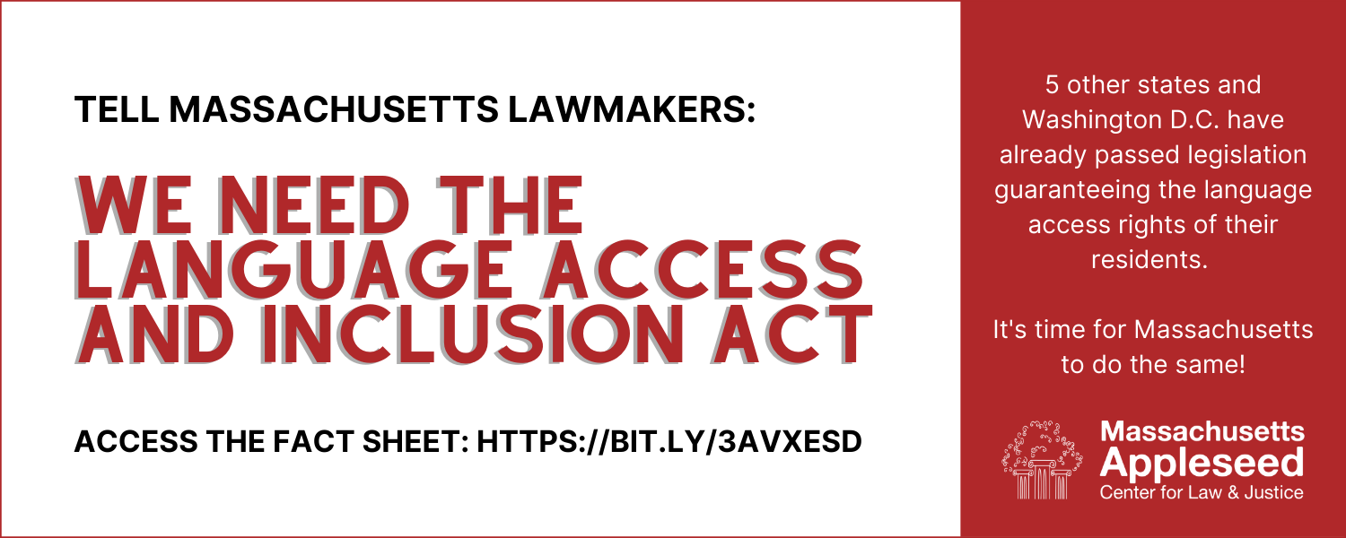 Language_access_letter_campaign__1_banner_new