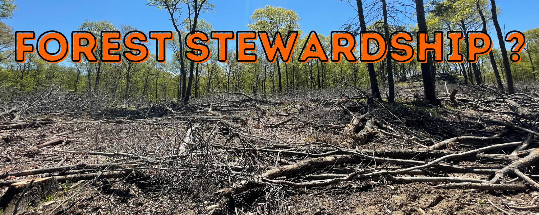 Forest_stewardship_ea_banner_2