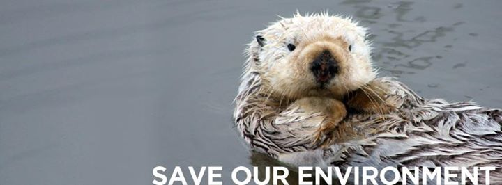 Save Our Environment