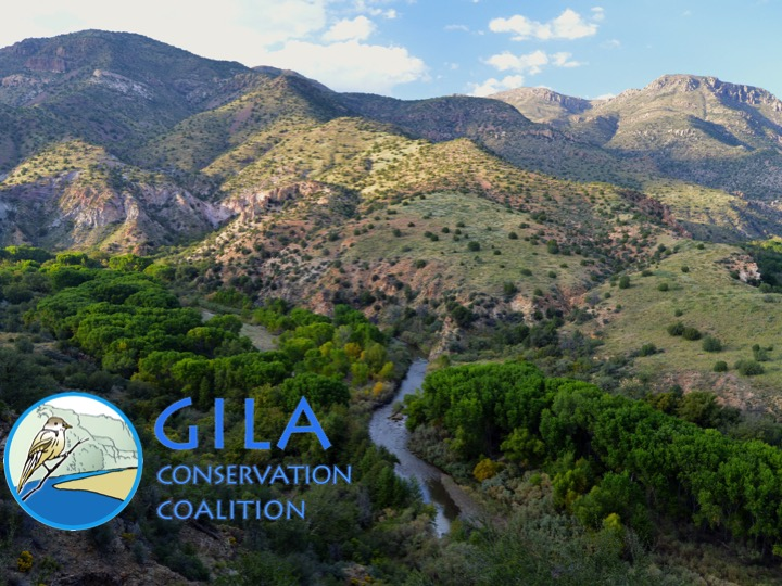 Gila Conservation Coalition