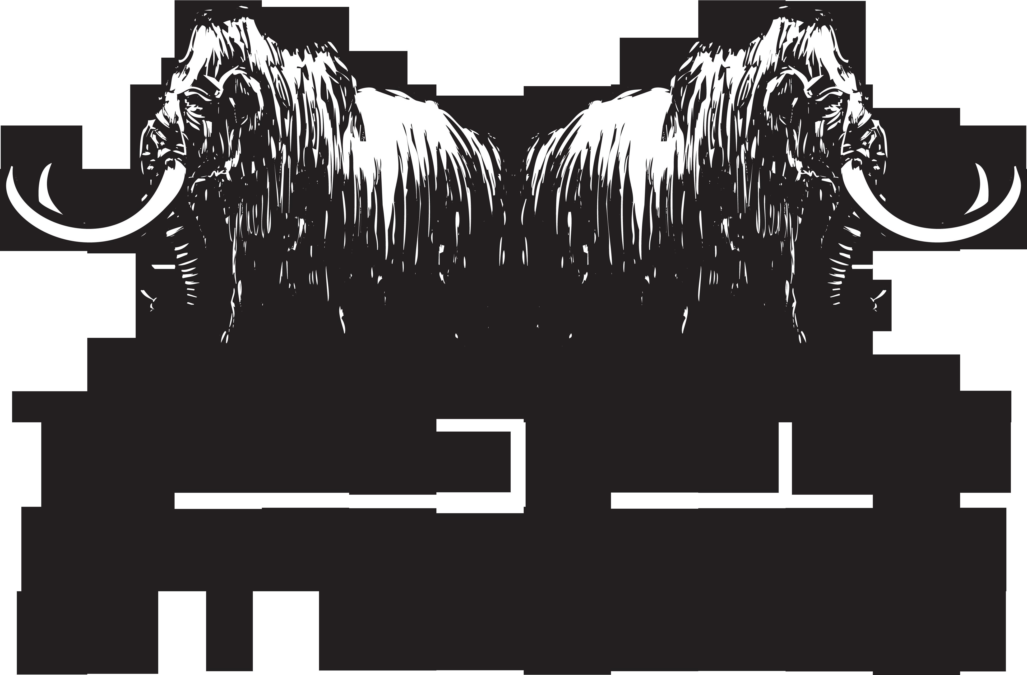 Times-Union Guild