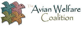 Avian Welfare Coalition