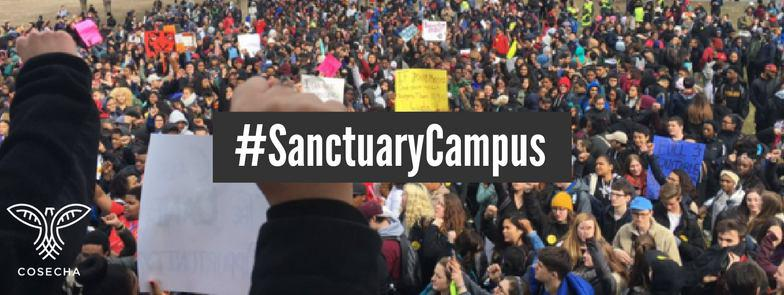 Sanctuary_campus