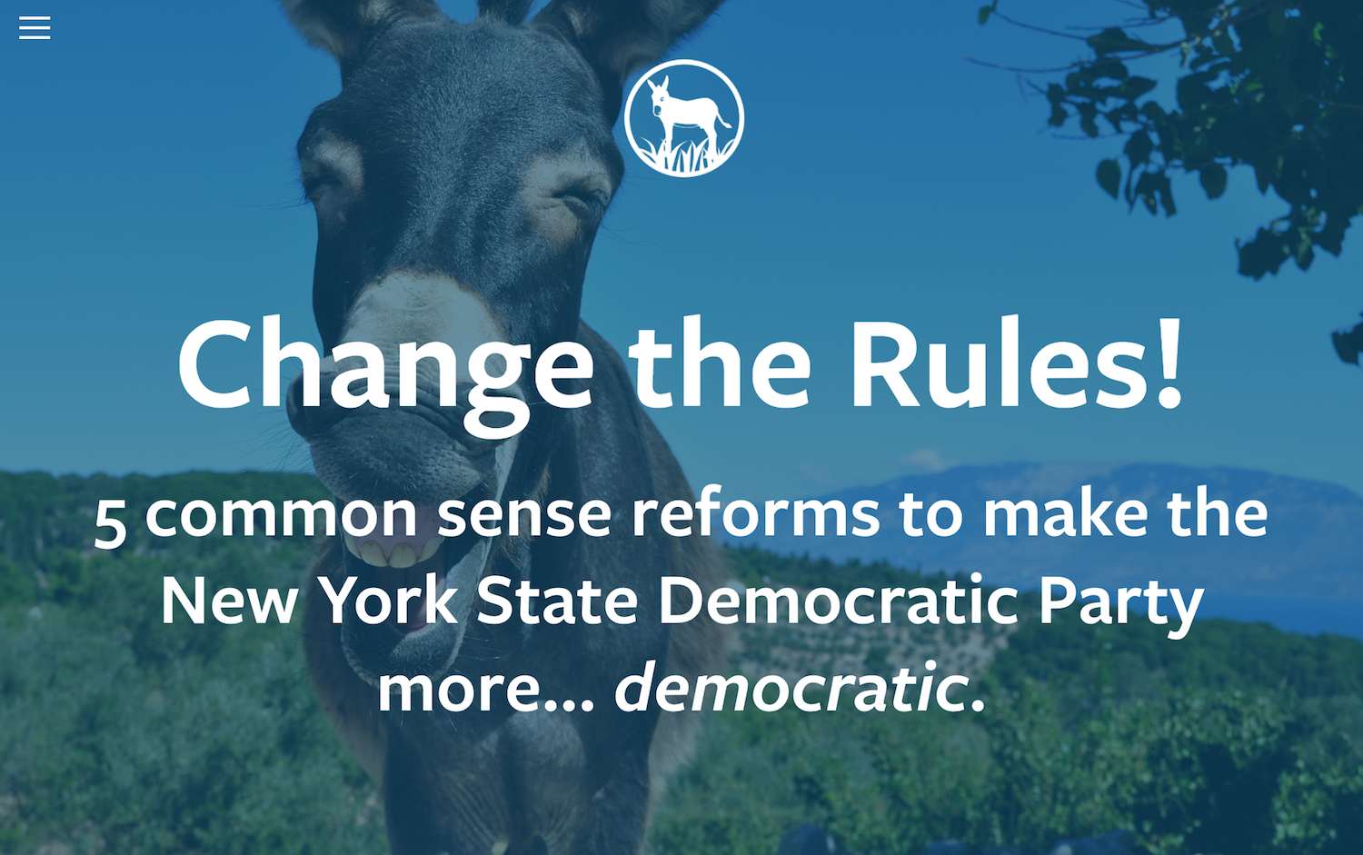 Change the rules and make the NYS Democratic Party more