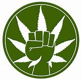 Pot_power_fist