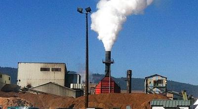 Biomass_plant_from_ncj