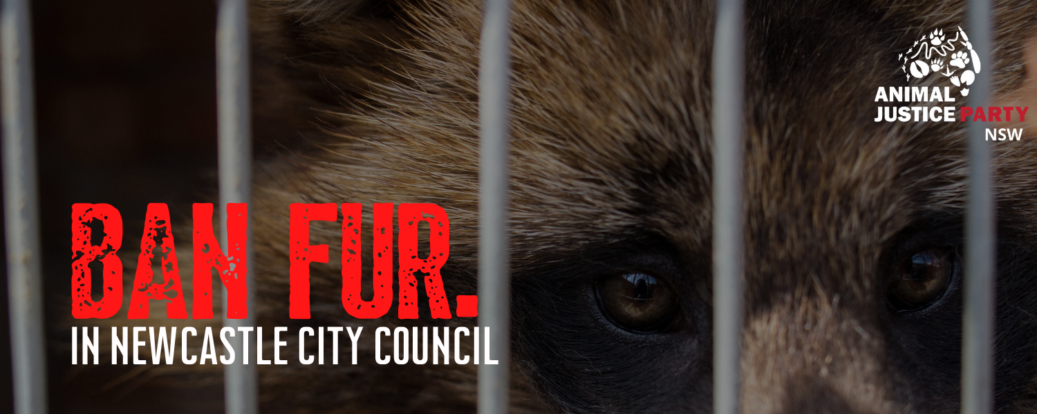 Ban_fur_in_newcastle_city_council_banner_(1)
