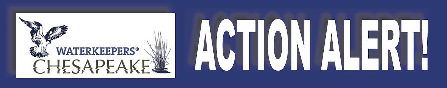 Actionalert_actionnetwork_banner