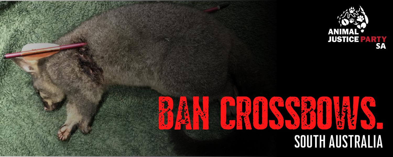 Ban_puppy_and_kitten_farming_sa