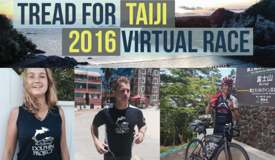 Taiji 2016 Virtual Race