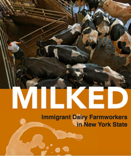 Monday, 7/31 in Ithaca: Stop 'Milking' NYS Dairy Farmworkers: NYS Farmworkers Fight for the Right to Organize