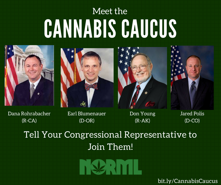 Tell Your Congressional Representative: Join the Cannabis Caucus