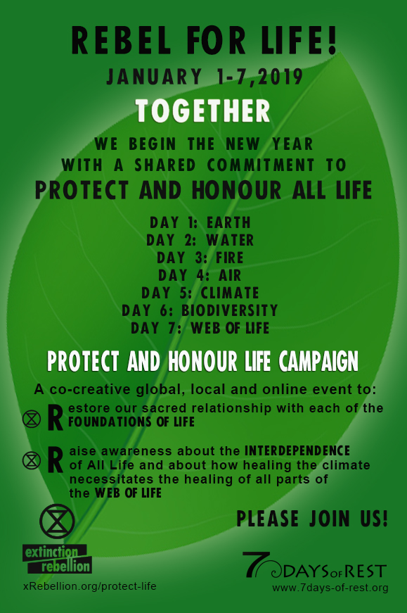 Protect and Honour All Life Campaign Poster