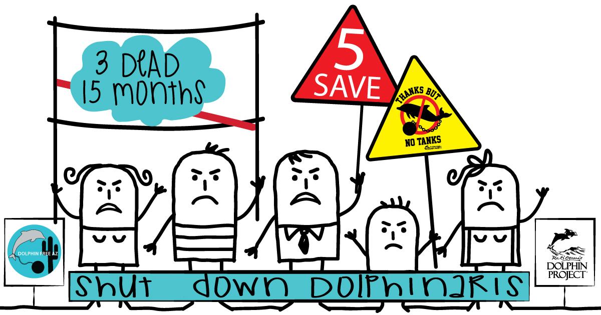 Shut Down Dolphinaris, Arizona!