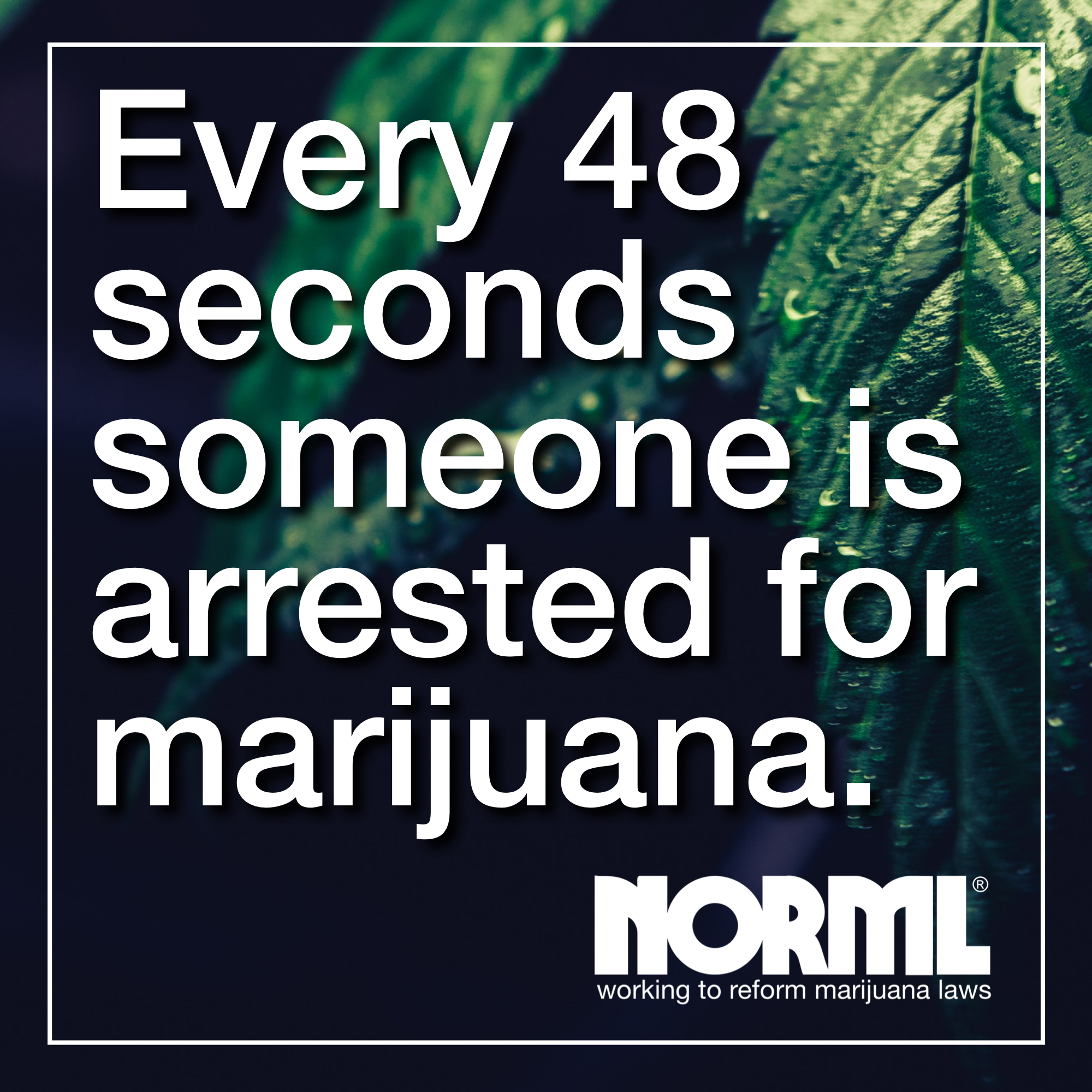 Every 48 seconds someone is arrested for marijuana in the US