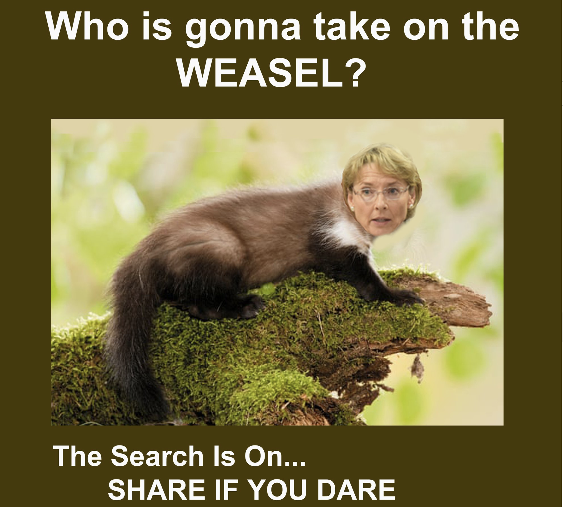 """Keep in mind that the """"weasel"""" is Senate President Cathy Giessel who is going to have to approve the nominee."""