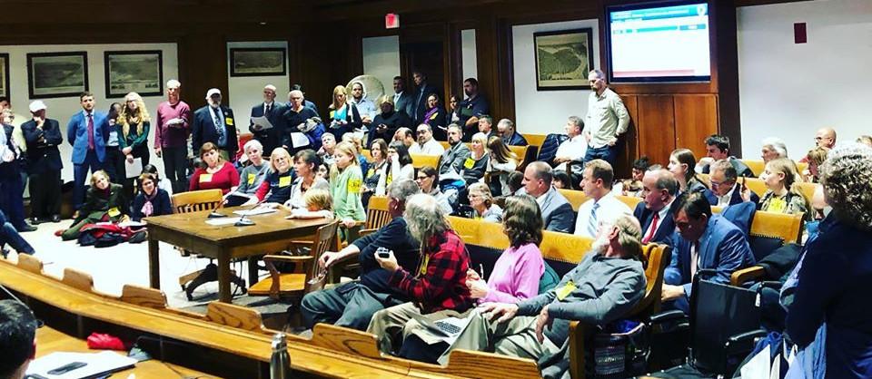 Public Hearing on Pesticides Bills, Nov. 12, 2019