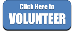 Volunteer for Alan Darnowsky campaign