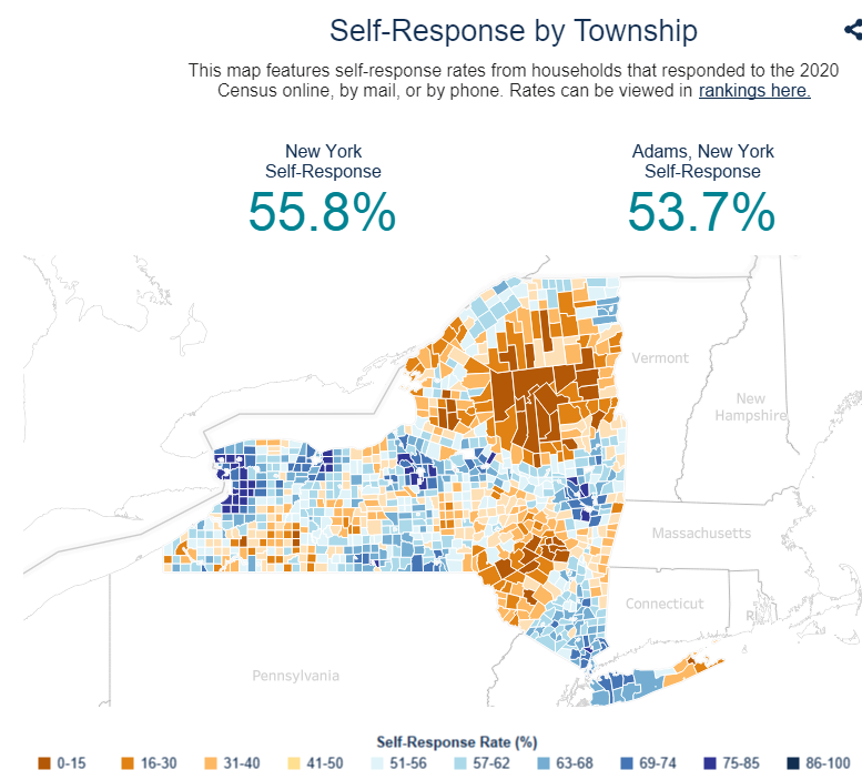 Self Response by Township Image