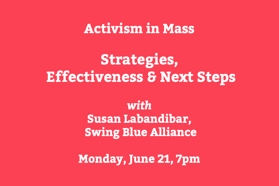 Strategies, Effectiveness, & Next Steps