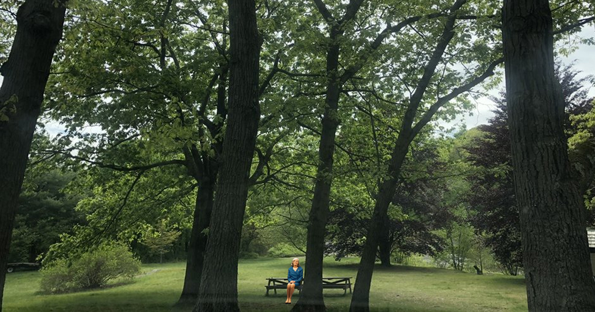 Family Friendly Park in Waltham located astonishingly close to the Mighty Squirrel Taproom