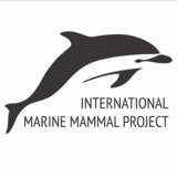 International Marine  Mammal Project