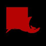 Phoenix Congress 2020